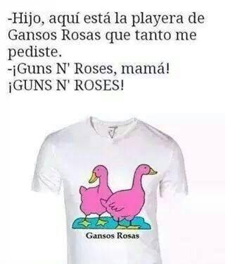 Gansos rosas