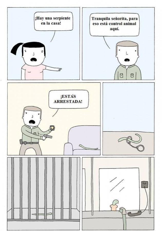 No es facil ser serpiente