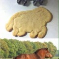fail galletas