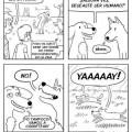 Los perros son mejores