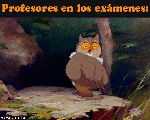 profesores en los examenes