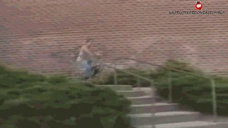 Experto en Bicicletas