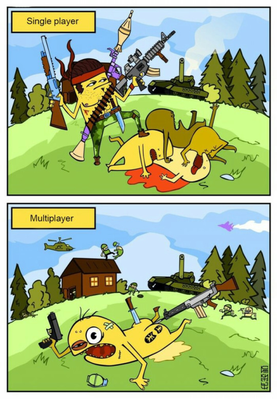 Single player vs multilayer