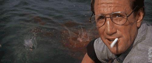 Tiburón ya no volverá a ser lo mismo