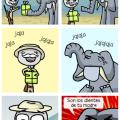 Un elefante nunca olvida