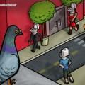 Viendo la vida como una paloma