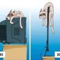 la tecnologia tambien afecta a los animales