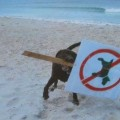 La revolucion de los perros