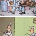 Como funciona la salud publica