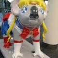 El extraño koala Sailor Moon