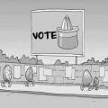 Elecciones democraticas