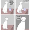 La vida desde la perspectiva de un gato
