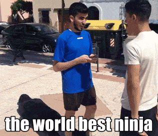 El mejor ninja del mundo