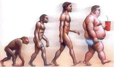 Evolucion moderna