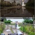 La magia de un buen fotografo