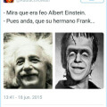 Los hermanos Einstein