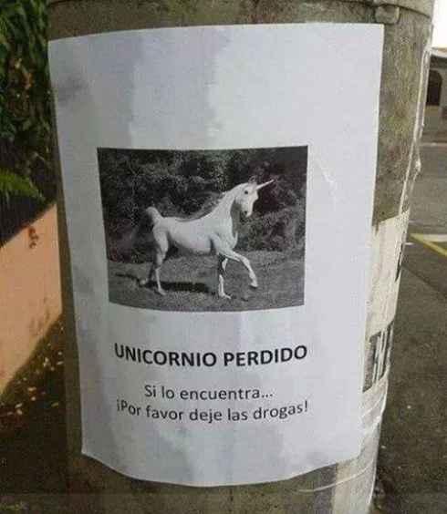 Se busca unicornio perdido