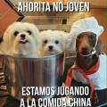 Jugando a la comida China