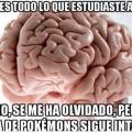 Cosas que tu cerebro hace