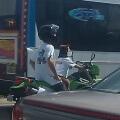 El perro motoquero