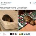 Noviembre no es muy diferente a Diciembre