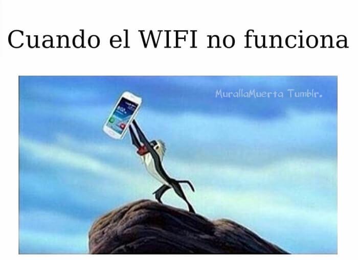 Cosas que haces cuando wl wifi no funciona