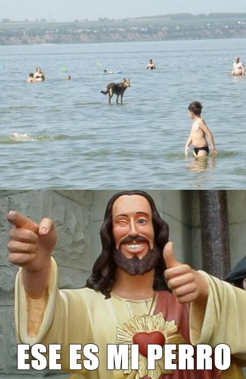 Jesus tenia un perro