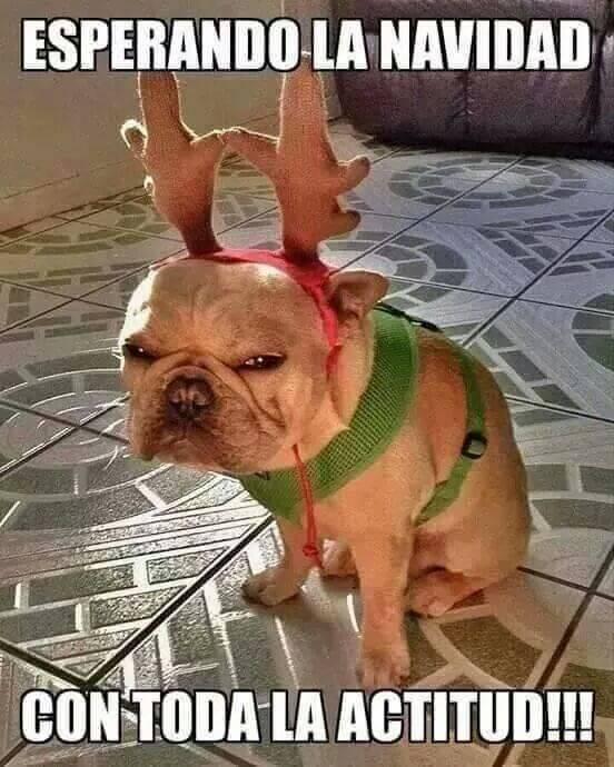 La actitud navideña