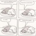 La vida dificil de ser un gato
