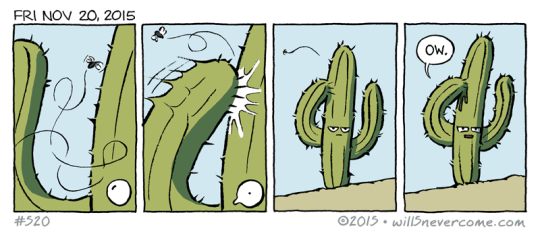 No es tan facil ser un cactus