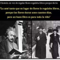 hasta en el amor Einstein era un genio