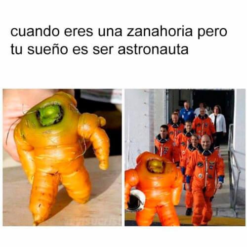 Cuando eres una zanahoria pero aun asi sigues tus sueños