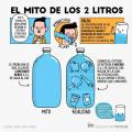El mito de los dos litros de agua