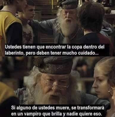 Cosas que no se vieron en Harry Potter