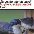 Cuando estas aprendiendo a besar