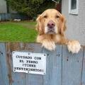 Por favor ten cuidado con el perro