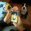 Como sacarle fotos a tu perro