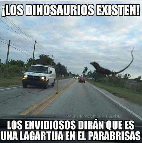 La prueba de que los dinosaurios existen