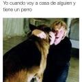 Cuando tiene un perro