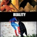 La fantasia siempre es mejor que la realidad