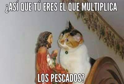 ¿Que pecado capital no soportarías ver a tu alrededor? - Página 2 Los-gatos-adoran-a-Jesus