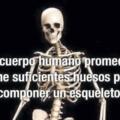 Tenemos suficientes huesos como para