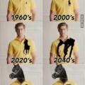 La evolucion de una marca