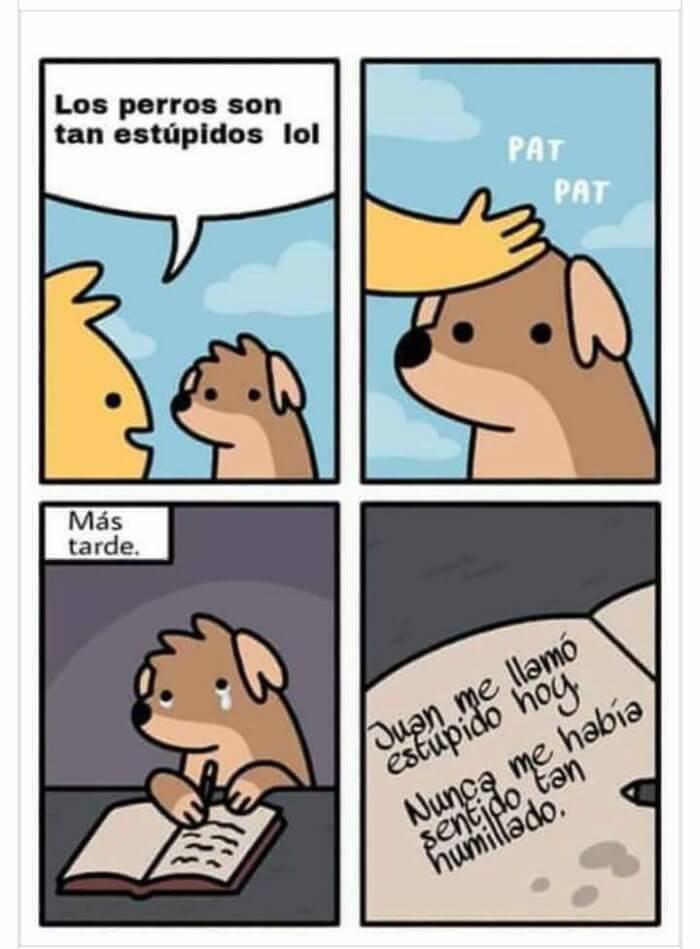 Los perros tambien tienen sentimientos