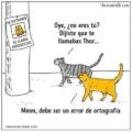 Porfavor elige bien el nombre de tu mascota
