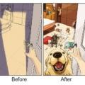 Tu vida cambia cuando tienes un perro