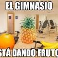 Finalmente el gym da frutos