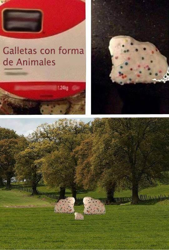 Galletas con forma de animales