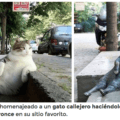 Podriamos aprender tanto de Estambul