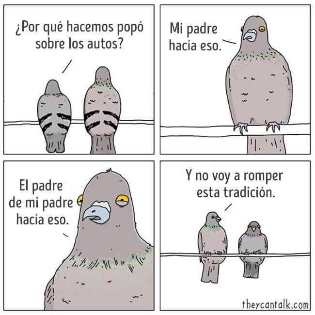 Porque las palomas hacen